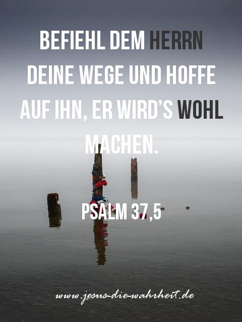 ᐅ Schone Bibelverse Die Schonsten Bibelverse Aus Dem Wort